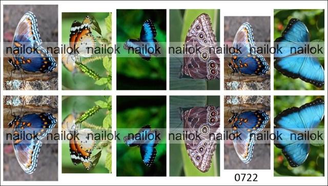 Слайдер-дизайн с бабочками NailOK 0722